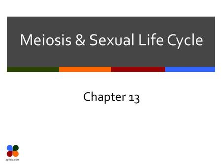 Meiosis & Sexual Life Cycle Chapter 13. Slide 2 of 27 Definitions  Genetics – scientific study of heredity and hereditary variation  H eredity – transmission.
