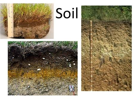 Soil. Formation of Soil Combination of sediments and organic material 4 main components – Organic material – Sediment – Water – Air Combinations of these.