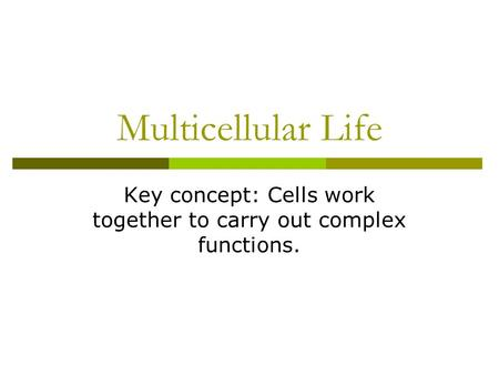 Key concept: Cells work together to carry out complex functions.