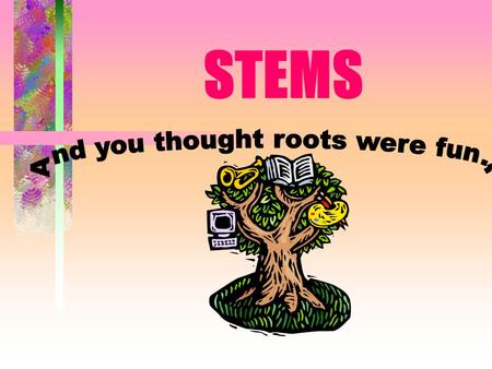 STEMS Purpose of Stems Support leaves Transport water and nutrients Store water and food.