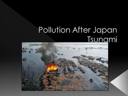  Types of pollution caused by the Japan's Tsunami: › Water pollution  Soil Contaminants and physical contaminants;  Oil spills; › Nuclear pollution.