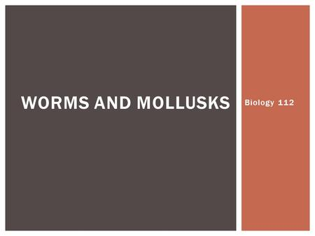 Worms and Mollusks Biology 112.