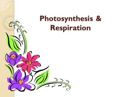 Photosynthesis & Respiration. What is Photosynthesis? The process of photosynthesis is a chemical reaction. It is the most important chemical reaction.