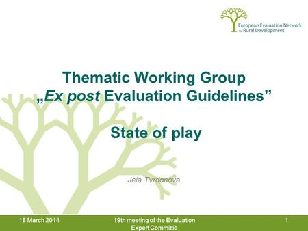 "18 March 201419th meeting of the Evaluation Expert Committie 1 Thematic Working Group ""Ex post Evaluation Guidelines"" State of play Jela Tvrdonova."