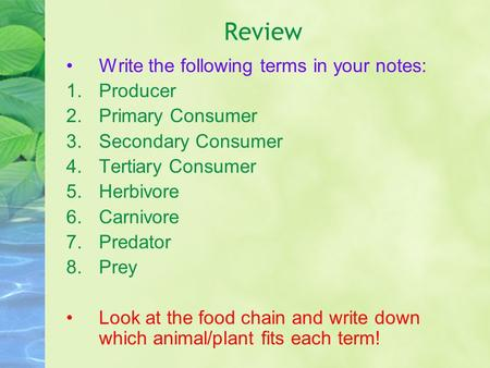 Review Write the following terms in your notes: 1.Producer 2.Primary Consumer 3.Secondary Consumer 4.Tertiary Consumer 5.Herbivore 6.Carnivore 7.Predator.