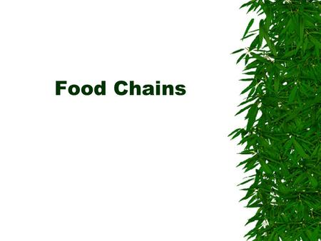 Food Chains.