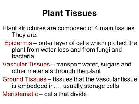 Plant Tissues Plant structures are composed of 4 main tissues. They are: Epidermis – outer layer of cells which protect the plant from water loss and from.