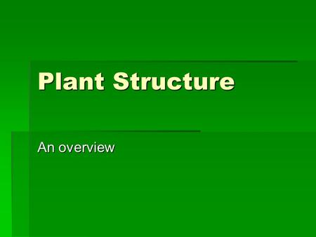 Plant Structure An overview. Plant Cells Cell Walls  Primary  Secondary  Middle lamella  Plasmodesmata.