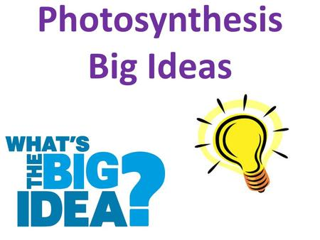 Photosynthesis Big Ideas