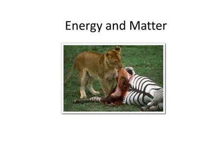 Energy and Matter. Energy Flow Cycle Organisms and Energy Almost all energy on Earth comes from the Sun.