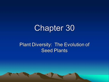 Chapter 30 Plant Diversity: The Evolution of Seed Plants.