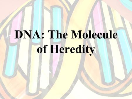 DNA: The Molecule of Heredity