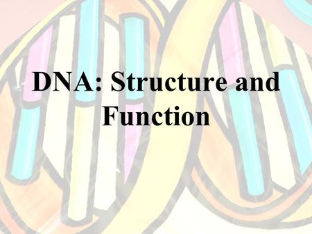 DNA: Structure and Function. DNA Structure Deoxyribonucleic acid. A macromolecule composed of two strands of monomers called nucleotides. These strands.
