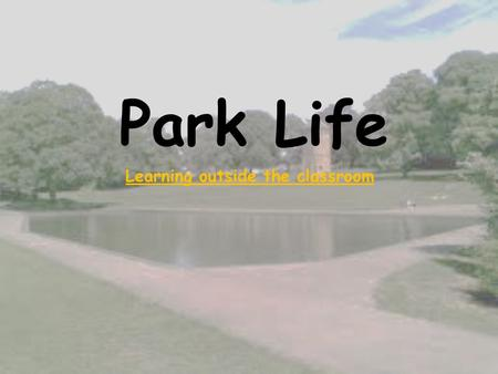 Park Life Learning outside the classroom. Our Plan Our plan is to take a group of Key Stage 1 children to Abington Park and create a range of cross- curricular.