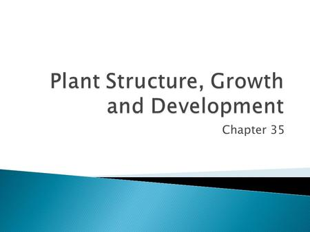 Chapter 35.  Cells make up tissues and tissues make up organs.  Plants have 3 main organs:  Roots  Stems  Leaves.