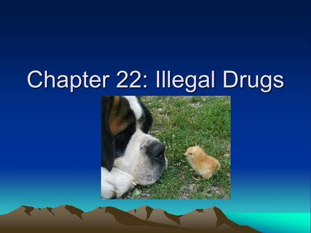 Chapter 22: Illegal Drugs