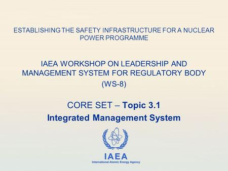 IAEA International Atomic Energy Agency ESTABLISHING THE SAFETY INFRASTRUCTURE FOR A NUCLEAR POWER PROGRAMME IAEA WORKSHOP ON LEADERSHIP AND MANAGEMENT.