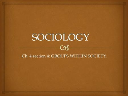 Ch. 4 section 4: GROUPS WITHIN SOCIETY.   Defined : a set of people who interact on shared expectations and possess some common identity. What is a.