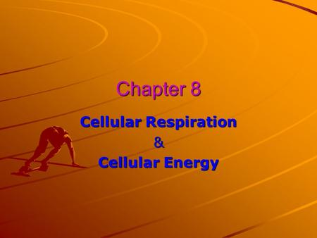 Chapter 8 Cellular Respiration & Cellular Energy.