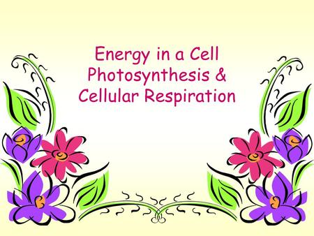 Energy in a Cell Photosynthesis & Cellular Respiration