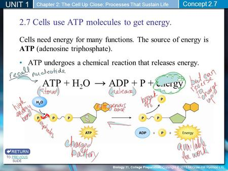 2.7 Cells use ATP molecules to get energy. Cells need energy for many functions. The source of energy is ATP (adenosine triphosphate). ATP undergoes a.