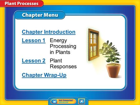 Chapter Menu Chapter Introduction Lesson 1Lesson 1Energy Processing in Plants Lesson 2Lesson 2Plant Responses Chapter Wrap-Up.