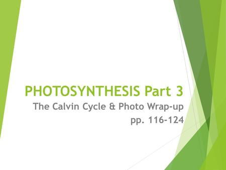 <strong>PHOTOSYNTHESIS</strong> Part 3 The Calvin Cycle & Photo Wrap-up pp. 116-124.