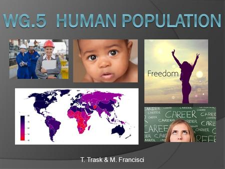 T. Trask & M. Francisci. What is Population Distribution? Population Distribution: The pattern of population in a country, continent or the world. o Only.