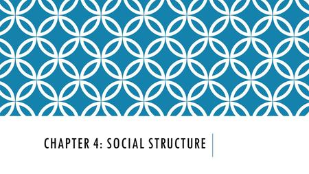 CHAPTER 4: SOCIAL STRUCTURE. SECTION 1: BUILDING BLOCKS OF SOCIAL STRUCTURE.