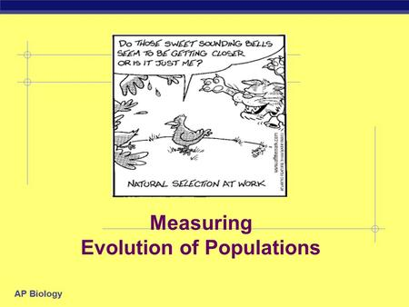 AP Biology Measuring Evolution of Populations AP Biology There are 5 Agents of evolutionary change MutationGene Flow Genetic DriftSelection Non-random.