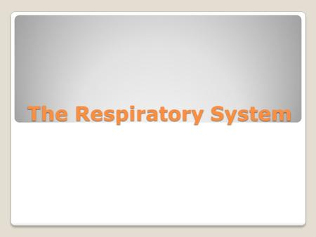 The Respiratory System. Do Now Missing Work Check-In.