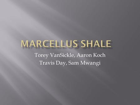 Torey VanSickle,Aaron Koch Travis Day, Sam Mwangi.