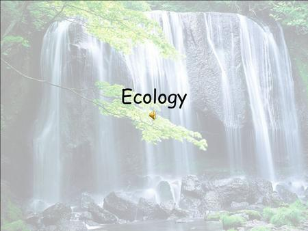 Ecology. Ecology - the study of interactions among organisms and between the organisms and their environment. These interactions occur in the biosphere.
