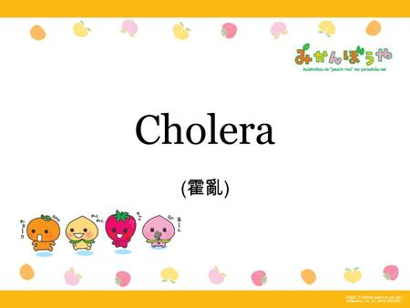 Cholera ( 霍亂 ). Route of trasmission eating food or drinking water contaminated with Vibrio cholerae from other cholera patients. The major reservoir.