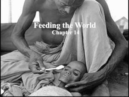 Feeding the World Chapter 14 Feeding the World Chapter 14.