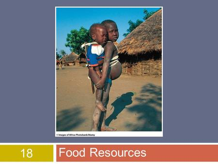 18 Food Resources. World Food Security  Feeding growing population is difficult  852 Mil people lack access to food (needed for healthy lives)  3 Billion.