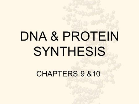 DNA & PROTEIN SYNTHESIS CHAPTERS 9 &10. Main Idea How are proteins made in our bodies?
