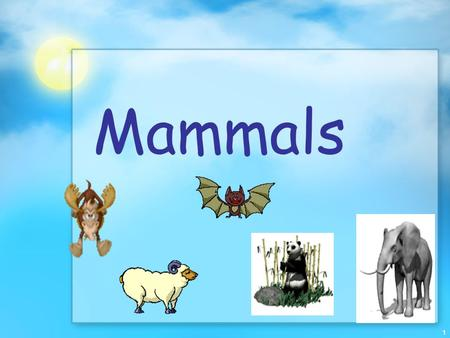 1 Mammals. 2 Evolution and Characteristics Mammals belong to the class Mammalia, which includes 4000 species Most dominant land animals on earth. Mammals.