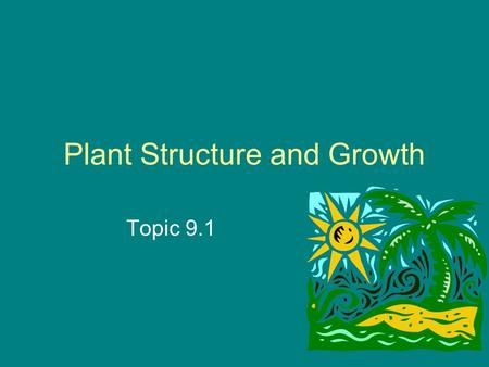 Plant Structure and Growth Topic 9.1. To review Study the chart on pg 239 for your different types of plants The seeded vascular plants include the angiosperms.