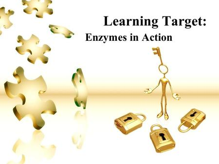 Learning Target: Enzymes in Action. Learning Target #1: Enzymes I Can… Describe the general role of enzymes in metabolic cell processes. I Will… Describe.