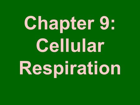 Chapter 9: Cellular Respiration. Nutrition Energy in most food originally comes from the sun 2 ways to get food –Autotrophs or Producers Make their own.