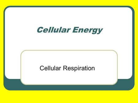 Cellular Energy Cellular Respiration.