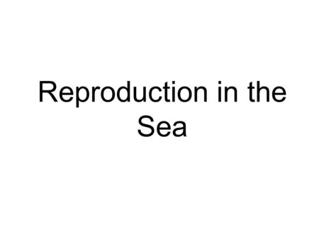 Reproduction in the Sea. Heredity : the passing of traits from parents to offspring Trait Trait : a genetically determined characteristic or condition.