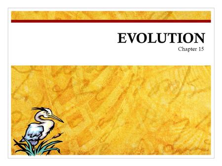 EVOLUTION Chapter 15. Charles Darwin In your own words, describe what YOU think the theory of evolution means… QUESTION.