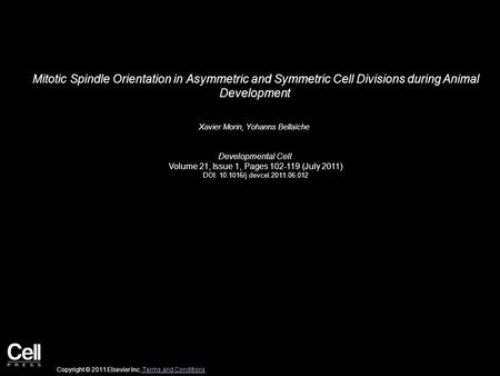 Mitotic Spindle Orientation in Asymmetric and Symmetric Cell Divisions during Animal Development Xavier Morin, Yohanns Bellaïche Developmental Cell Volume.