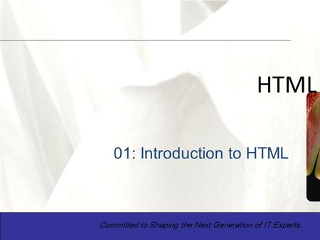 XP 1 HTML Committed to Shaping the Next Generation of IT Experts. 01: Introduction to HTML.