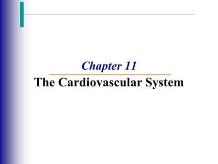 Chapter 11 The Cardiovascular System. The Cardiovascular System  A closed system of the heart and blood vessels  The heart pumps blood  Blood vessels.
