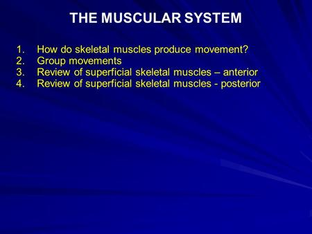 THE MUSCULAR SYSTEM 1. How do skeletal muscles produce movement?
