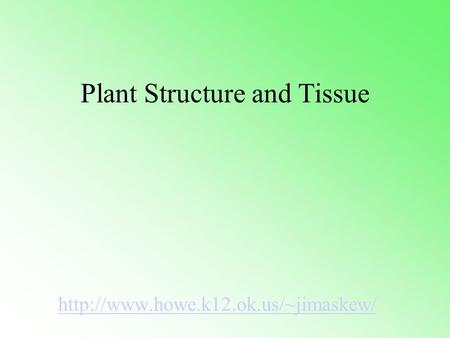 Plant Structure and Tissue