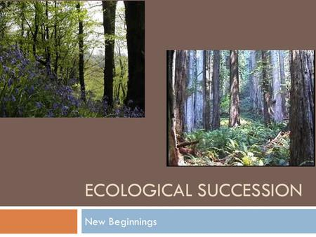 ECOLOGICAL SUCCESSION New Beginnings. Changing Ecosystems  Ecosystems are constantly changing  What might cause a change in an ecosystem??  Human interference.